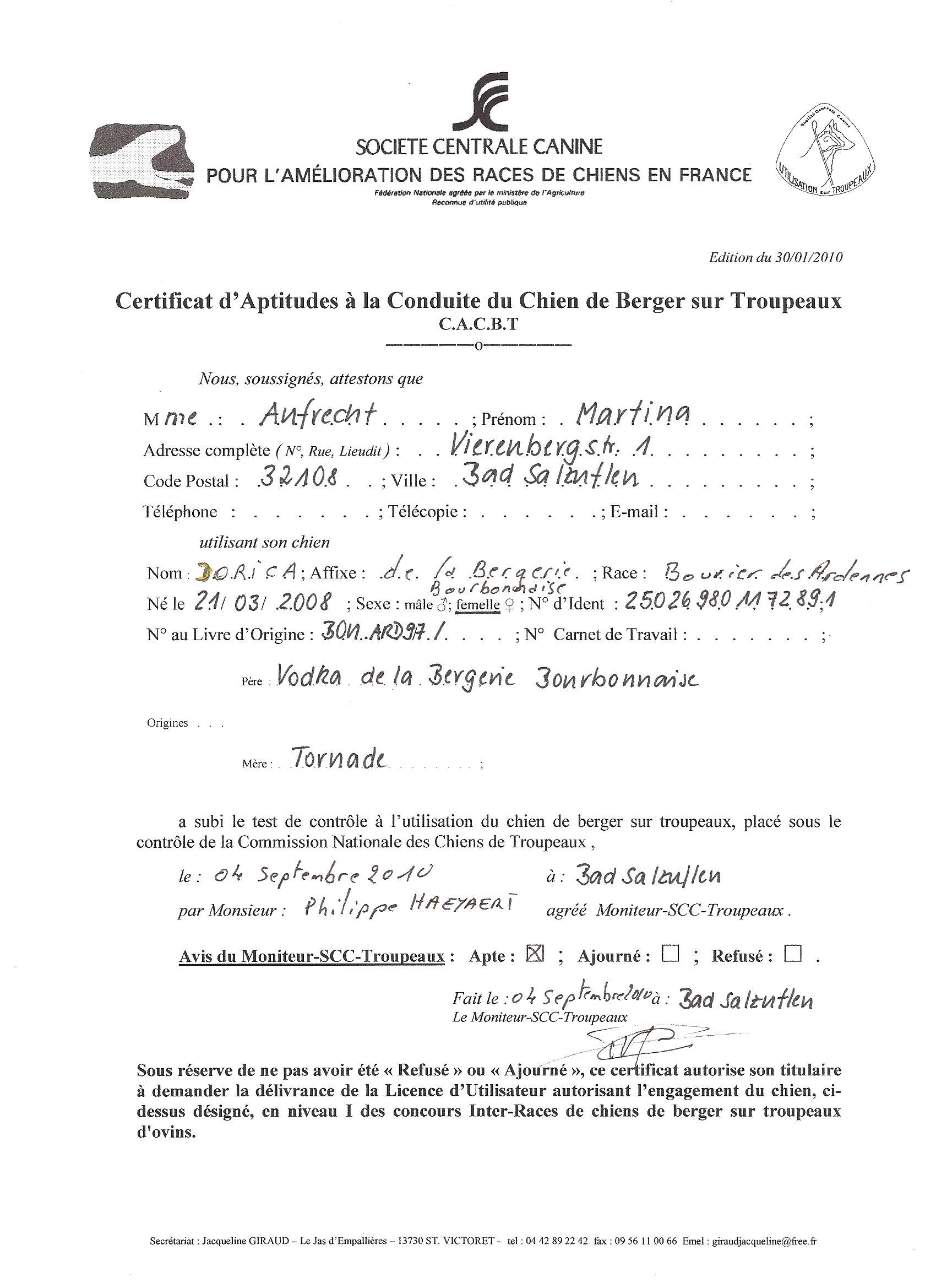 """Am 17.10.2010 besteht rieka die begleithundprüfung mit """"gut"""